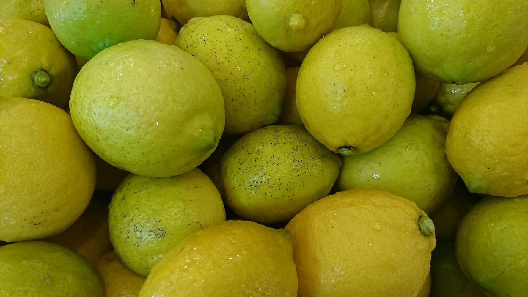 来年用の「かき氷用」レモンシロップ作り。_a0125419_07291742.jpg