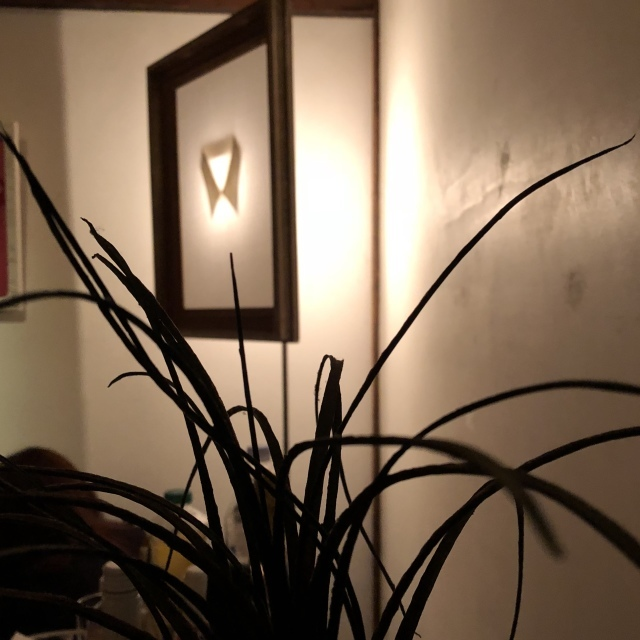 2017.12②Erika\'s Room  yamatani hideaki_e0138627_04380402.jpeg