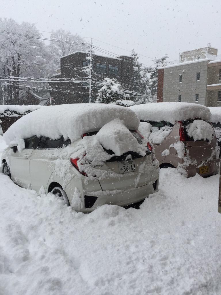 雪降って地固まる_c0113733_10342436.jpg