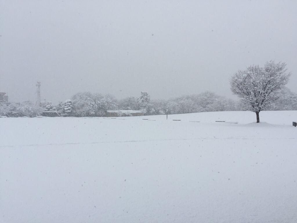 雪降って地固まる_c0113733_10352625.jpg