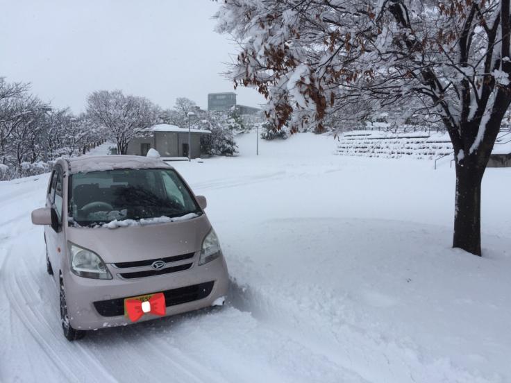 雪降って地固まる_c0113733_10434325.jpg