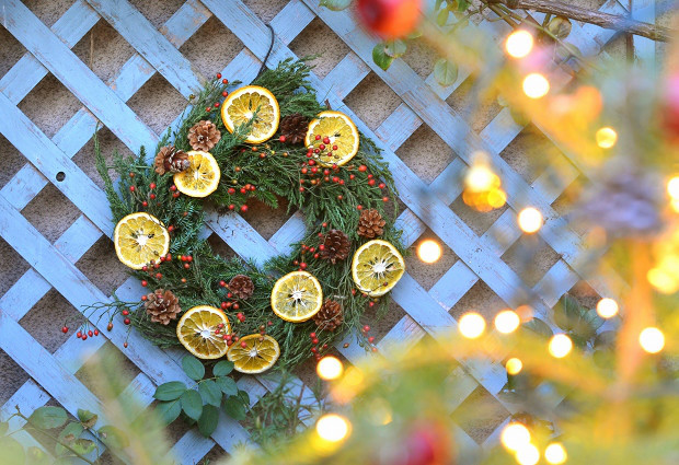 庭の植物でクリスマスリース  Handmade Christmas Wreath made of My Garden Plants_d0025294_19065532.jpg