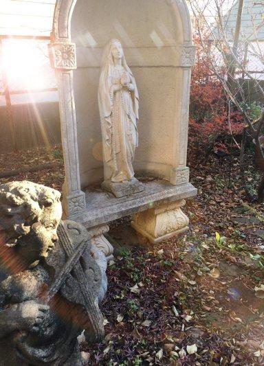 冬の庭 _c0203401_12054354.jpg