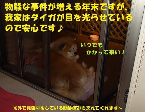 f0121712_22145066.jpg