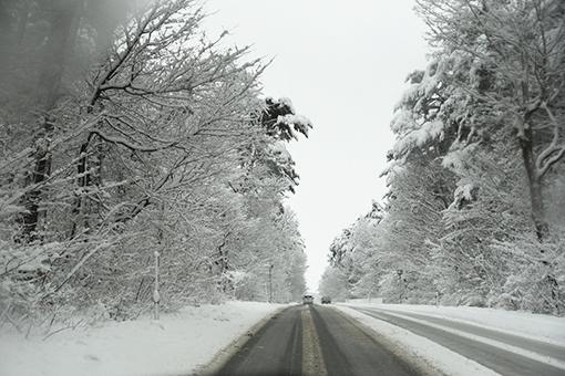 雪の日の小さなお出かけ_b0259218_02410396.jpg
