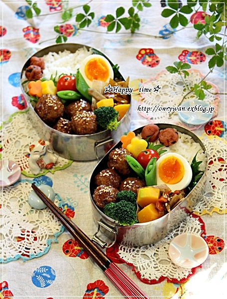 肉団子弁当とお弁当箱の話し♪_f0348032_18055409.jpg
