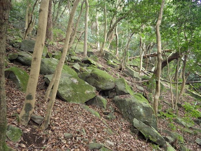 上貫から貫山コースを歩く_e0164643_16402884.jpg