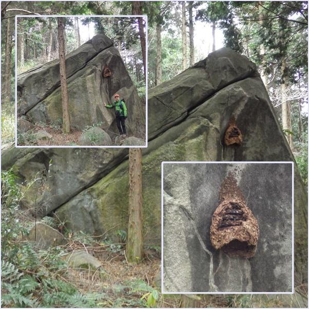 上貫から貫山コースを歩く_e0164643_1741296.jpg