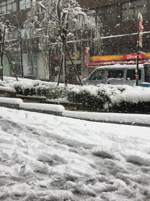 雨にも、雪にも負けない防水スプレー_b0226322_20225032.jpg