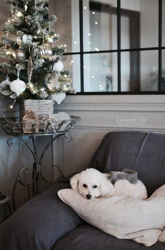 Christmas wreath_f0321522_17150303.jpg