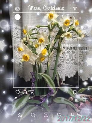 f0162908_20543154.jpg