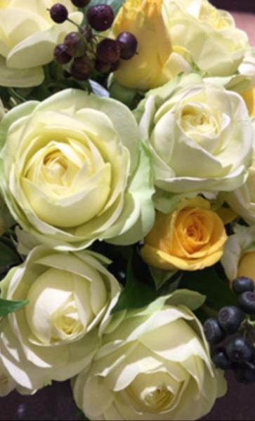 コロンとしたバラの魅力たっぷり♪_a0300110_07592314.jpg