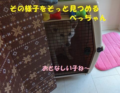 f0121712_06070574.jpg
