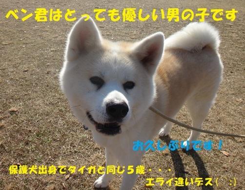 f0121712_06245297.jpg