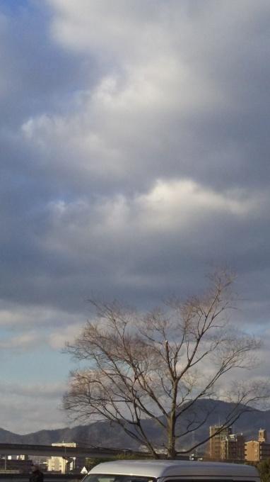 冬至です。_e0094315_16274620.jpg