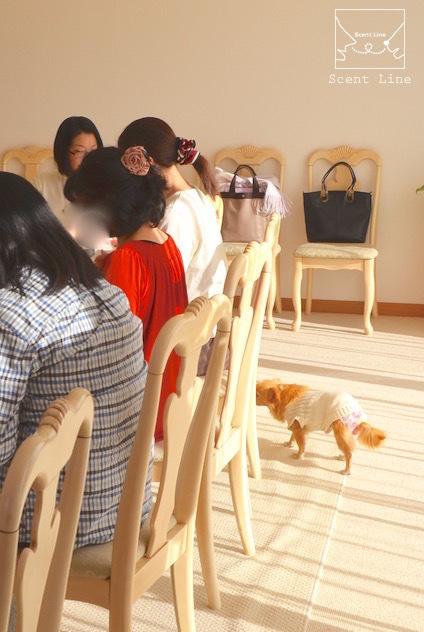 ペットと暮らすヒトのための心理学セミナーレポート_c0099133_00435282.jpg
