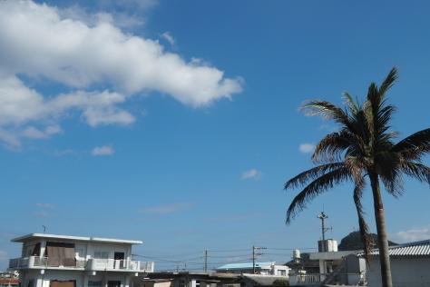 12月22日 続々来島!!_d0113459_20092965.jpg