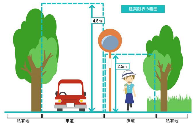 鎌倉市が円覚寺に樹木のオーバーハングで申し入れ12・19_c0014967_10121422.jpg