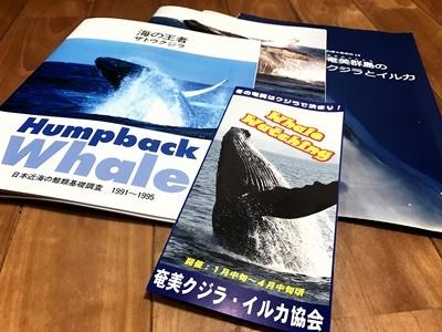 「奄美クジラ・イルカ協会 総会」_b0033573_17244140.jpg