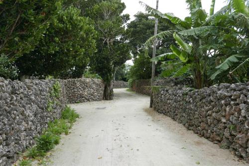 海界の村を歩く 東シナ海 鳩間島・竹富島_d0147406_17205647.jpg