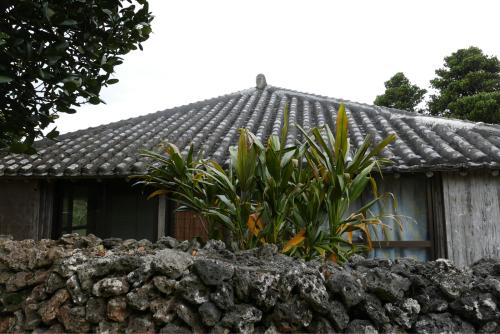 海界の村を歩く 東シナ海 鳩間島・竹富島_d0147406_17205833.jpg