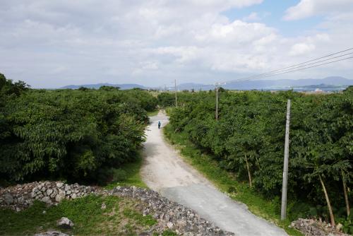 海界の村を歩く 東シナ海 鳩間島・竹富島_d0147406_17225450.jpg