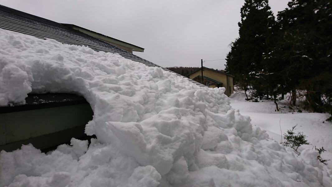 雪下ろし_f0081443_21511431.jpg