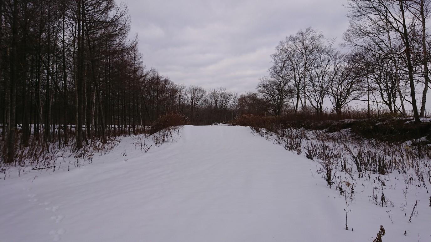 こんな感じの林間コース&桂側_e0183255_00311442.jpg