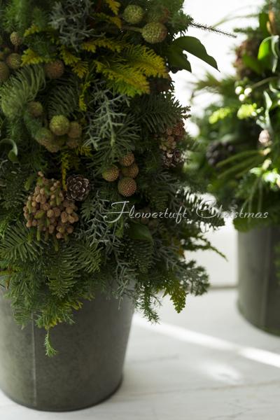 クリスマスレッスンとクリスマスティ_c0137872_19305652.jpg