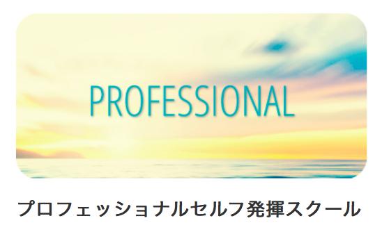 プロセルフ発揮スクール体験セッション☆_a0142373_15270452.png