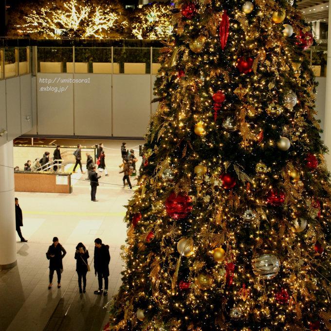 クリスマスっぽさ_b0324291_22592356.jpg