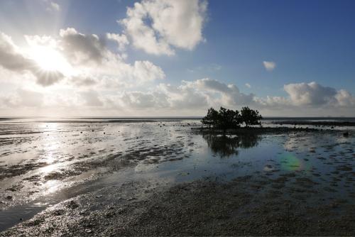 海界の村を歩く 東シナ海 西表島_d0147406_15090673.jpg