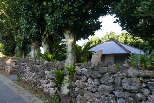 海界の村を歩く 東シナ海 西表島_d0147406_15103061.jpg