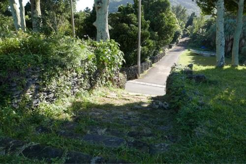 海界の村を歩く 東シナ海 西表島_d0147406_15323273.jpg