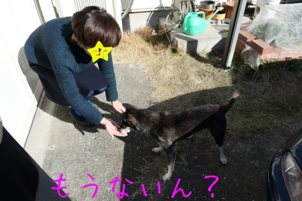 鶏焼き会_f0369014_09251909.jpg