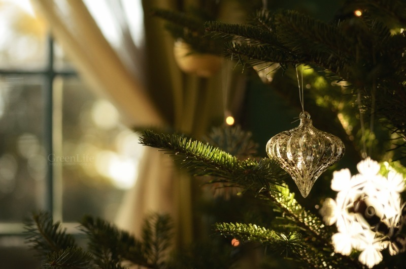 Christmas Eve_f0321522_17190975.jpg