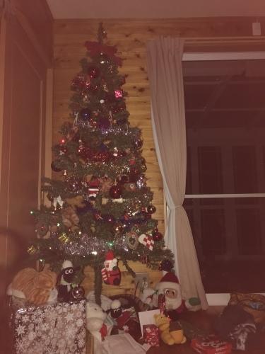 クリスマスパーティー\(^o^)/_b0170834_18575512.jpeg