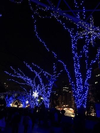 クリスマスのお出かけ_e0359436_09190605.jpg