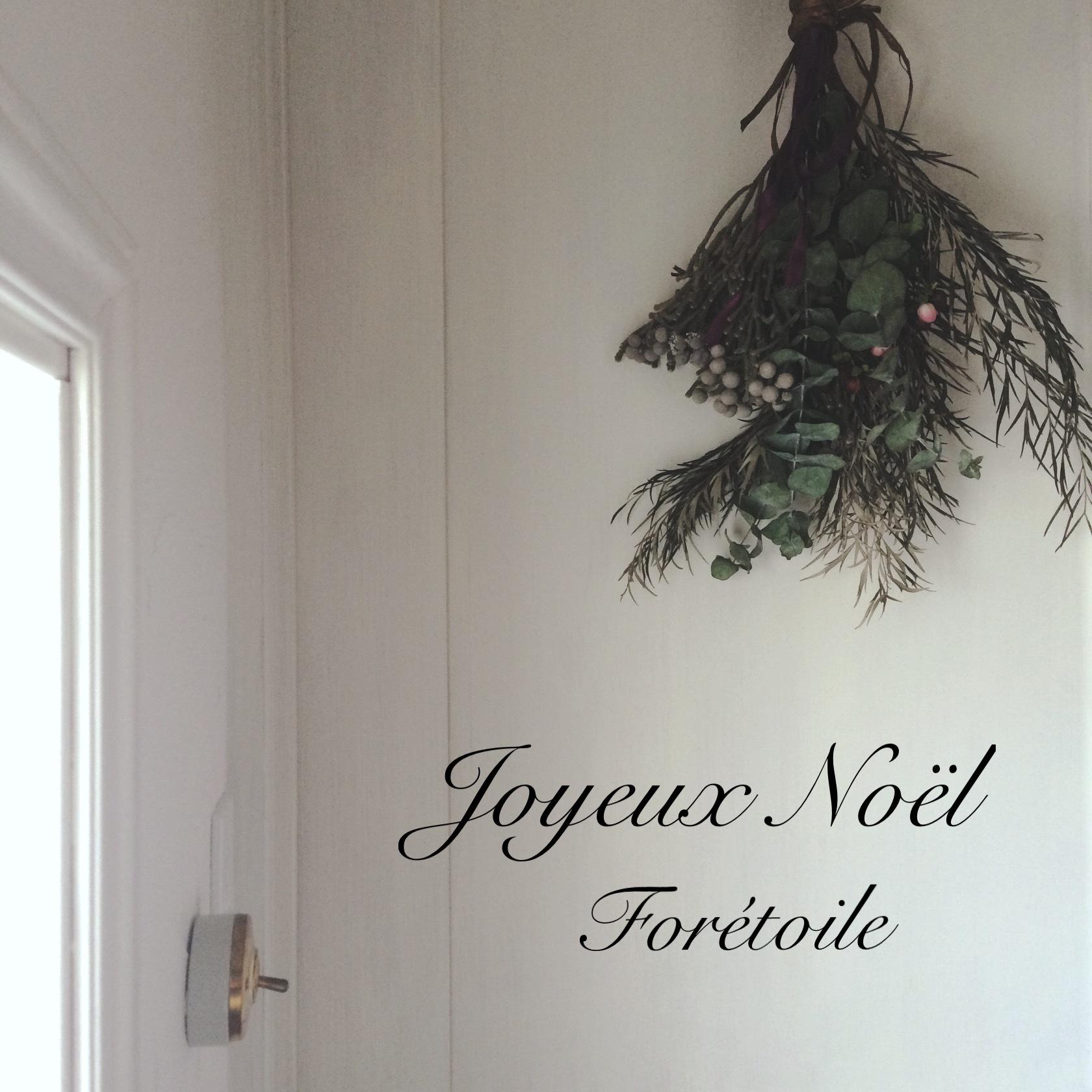 Joyeux Noël_f0377243_23502622.jpg