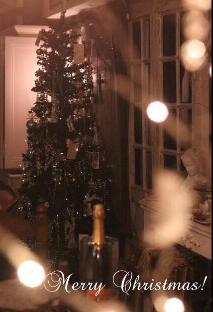 クリスマスの我が家の動画_e0237680_16284585.jpg