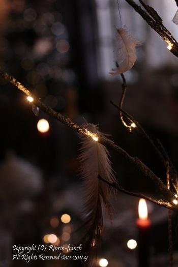 クリスマスの我が家の動画_e0237680_16323173.jpg