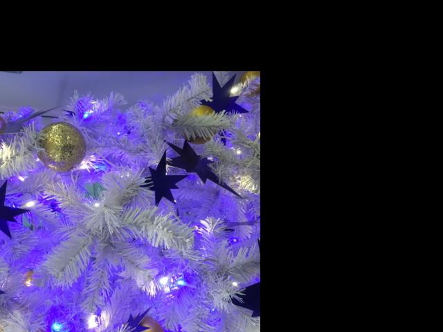 Christmas!_a0152283_10291279.jpg