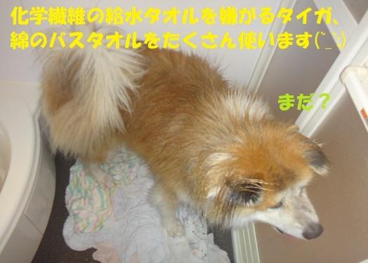 f0121712_22230314.jpg