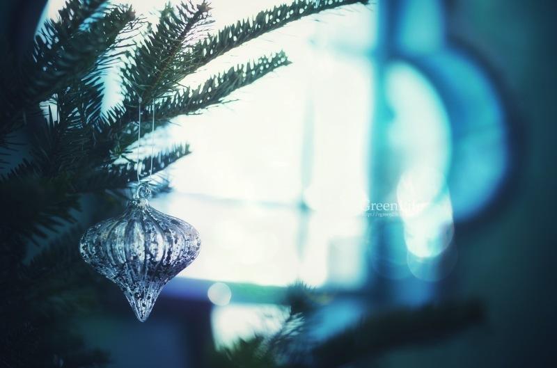 クリスマスの朝_f0321522_14522865.jpg