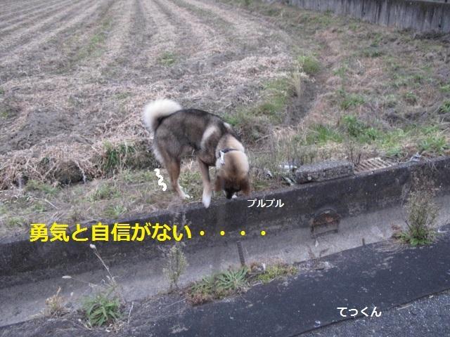 f0143123_09212929.jpg