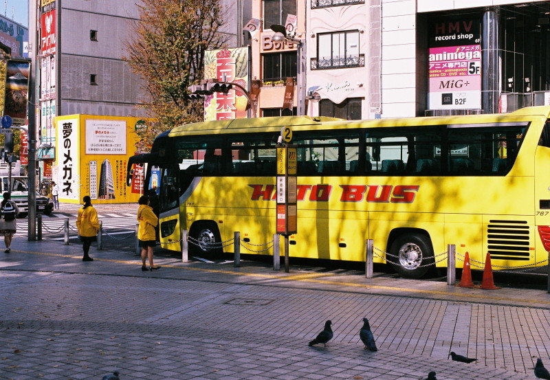 BUS   ・・・ハトバス・・・_f0333031_05352704.jpg