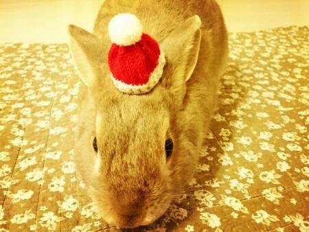 クリスマスイブ♪♪♪_f0201565_19343994.jpg