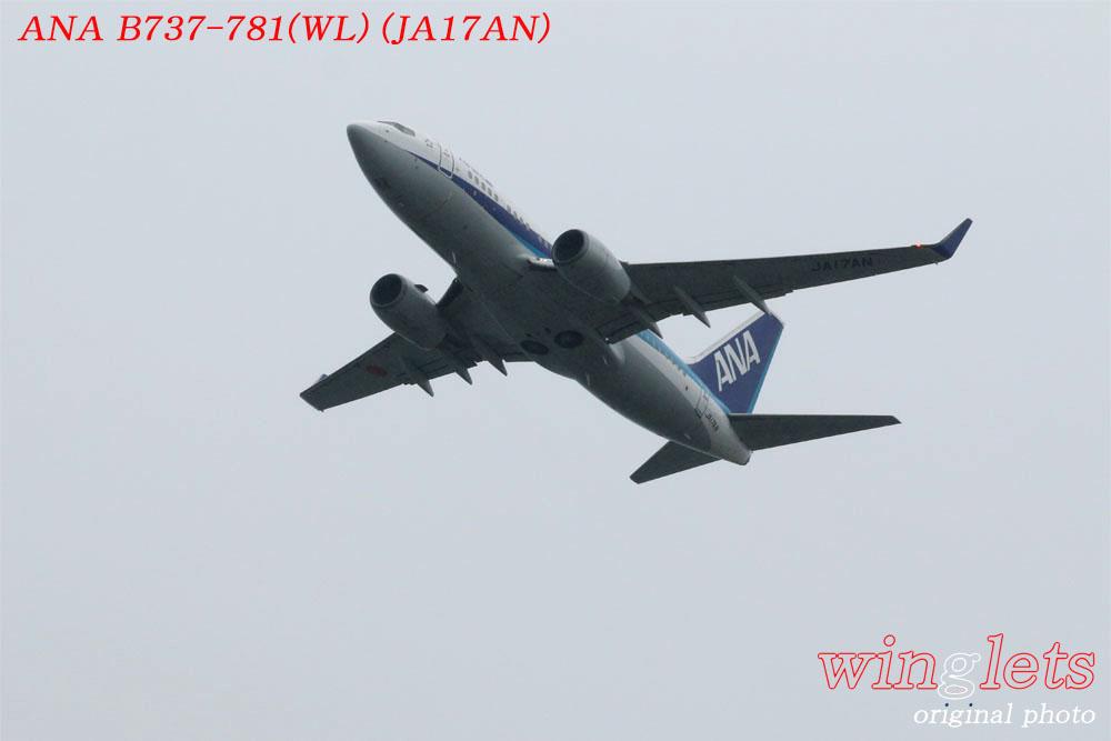 '17年 関西空港(RJBB)レポート ・・・ ANA/JA17AN_f0352866_20551485.jpg