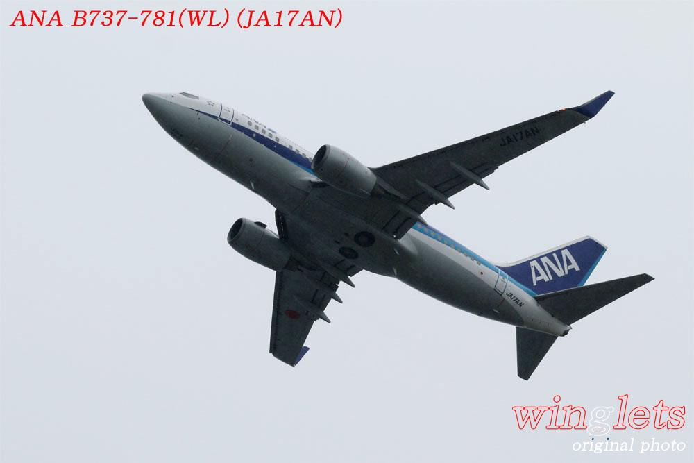 '17年 関西空港(RJBB)レポート ・・・ ANA/JA17AN_f0352866_20573918.jpg