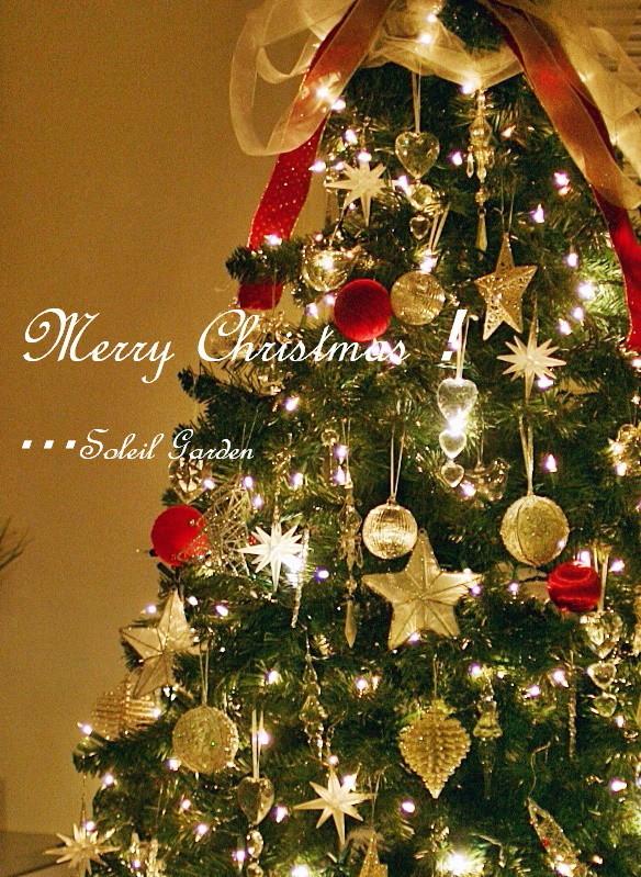 ◆街はクリスマス★_e0154682_23045821.jpg
